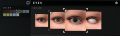 CharCreator-8-Eyes.png