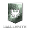 Logo faction gallente federation.png