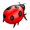 Bug icon red.png